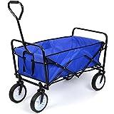 HOMFA Carro Plegable de Mano Carro transporte para jardín Carro para playa Carga 80kg (Azul)