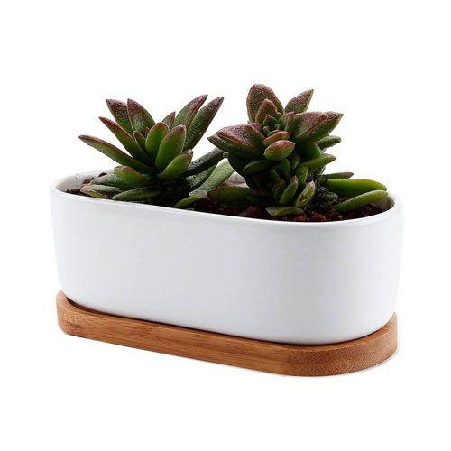 maceta ovalada ceramica blanca madera